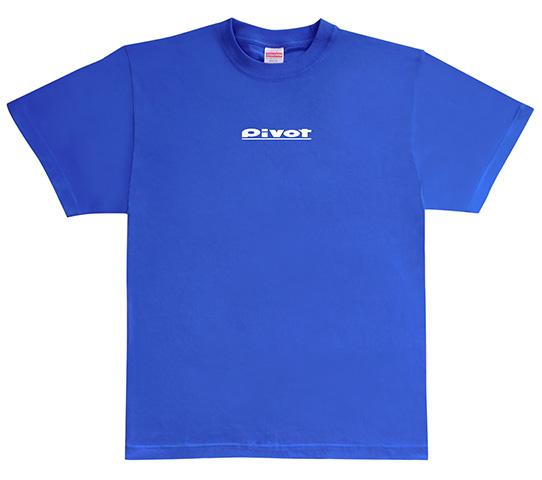 Tシャツ青 (L)